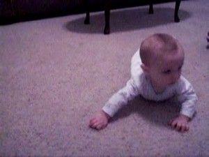 Crawl2