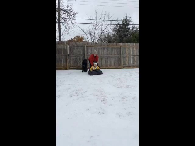 SnowSled2